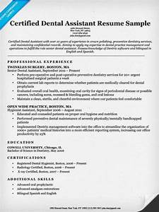 dental resume examples writing tips resume companion With dental assistant resume