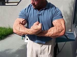 Vascular Bodybuilding Muscle Stop   More From Super Vascular Bodybuilder Hazbin