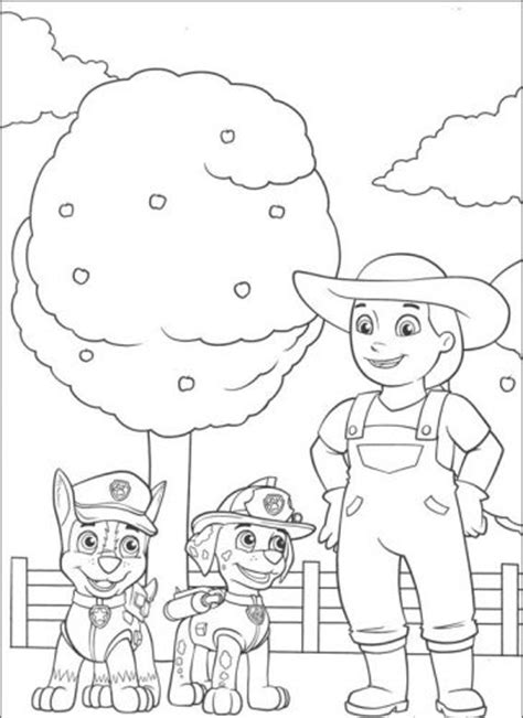 desenhos para pintar patrulha canina educa 231 227 o