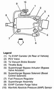 I Need A Gas Tank Evap Diagram For A 1999 Ponitac Grand Prix  A Couple Of The Hoses Have Broken