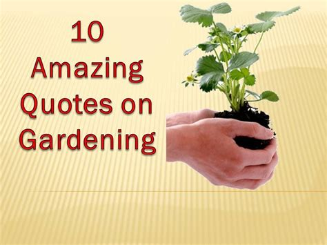 Gardening Quotes Inspirational Image Quotes At Relatablycom