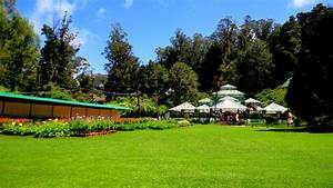 File:Government Botanical Garden,OOTY ,TAMIL NADU ,INDIA ...