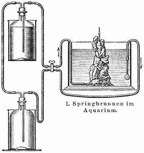 Sauerstoff Im Aquarium : aquarium ~ Eleganceandgraceweddings.com Haus und Dekorationen