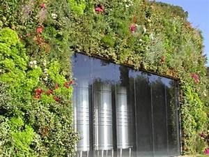 Mur Végétal Extérieur : mur vgtal extrieur installation de murs vgtaux en ~ Premium-room.com Idées de Décoration