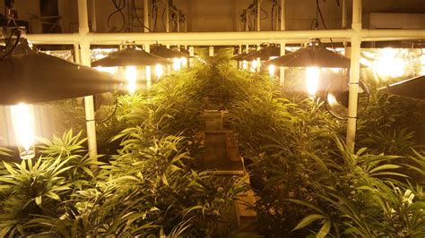 grow room lights indoor grow light and lightrail light movers
