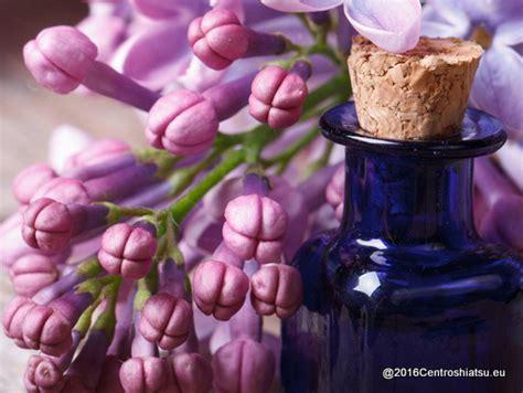 fiori do bach impatiens centro shiatsu pellegrino