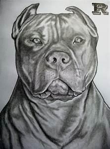 pitbull drawing ideas/ insperation | Drawing | Pinterest ...