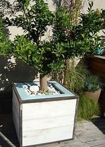 Plante D Extérieur En Pot : pots et plantes le bon accord marie claire ~ Teatrodelosmanantiales.com Idées de Décoration