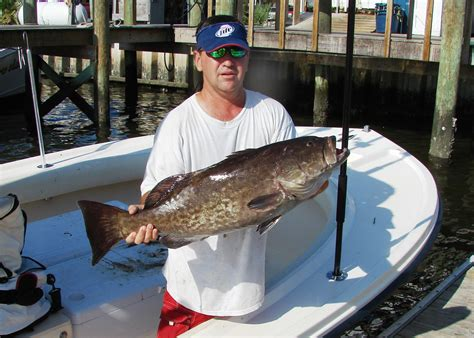 grouper fishing its shallow water closure annual month jan reached allocation apparently segment early commercial could ended recreational season gag