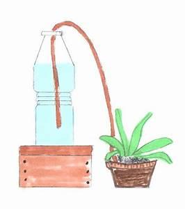 automatische bewasserung With feuerstelle garten mit zimmerpflanzen automatisch bewässern