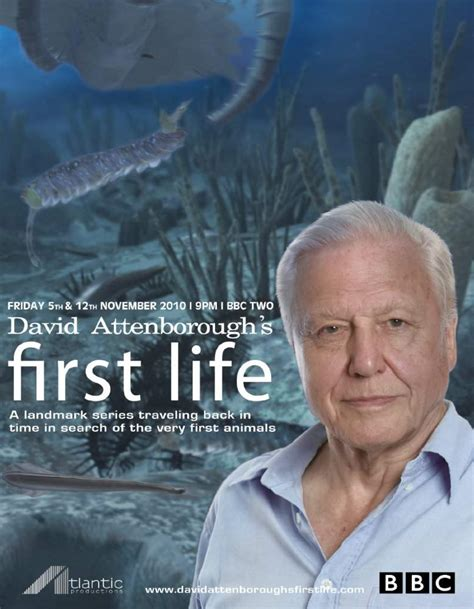 Watch David Attenborough's First Life 2010 full movie ...