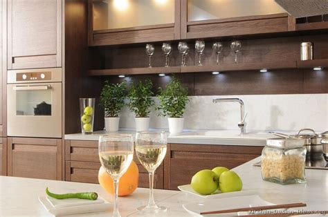 Kitchen Countertop Decorative Accessories by Pictures Of Kitchens Modern Wood Kitchens