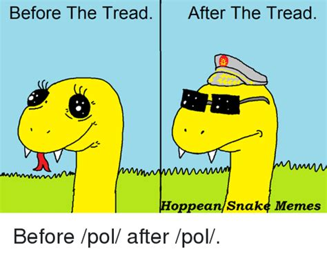 Hoppean Snake Memes - before the tread after the tread hoppean snake memes before pol after pol meme on sizzle