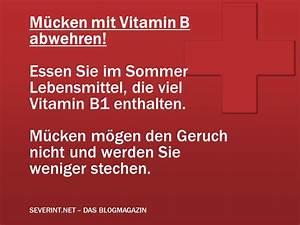 Was Essen Mücken : tipp m cken mit vitamin b1 abwehren das blogmagazin ~ Frokenaadalensverden.com Haus und Dekorationen