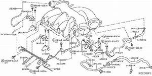 Nissan Pathfinder Evaporative Emissions System Lines  Piping  Canister