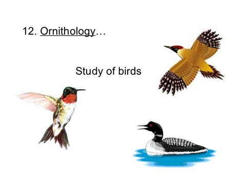 topic 1 what is biology