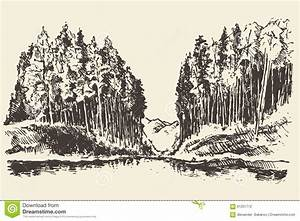 Hand Drawn Landscape Lake And Fir Forest Vector Stock ...