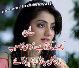 Urdu Love Sad Poetry 2 Lines