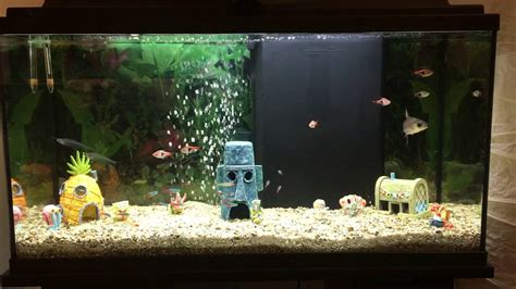 acuario de bob esponja youtube