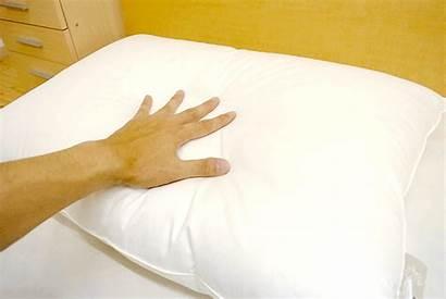 Down Pillows Pillow Goose Soft Rest Stiff
