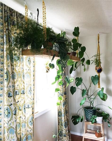Best Indoor Window Plants by Clever Ways To Hang Your Plants Plant Inspiration