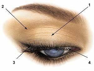 Quel Fard A Paupiere Pour Yeux Marron : quel maquillage pour yeux marrons ~ Melissatoandfro.com Idées de Décoration