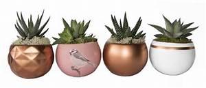 Cache Pot Magnétique : pot magnetique ~ Teatrodelosmanantiales.com Idées de Décoration