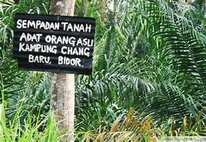 Orang Asli in Perak apprehensive | The Nut Graph