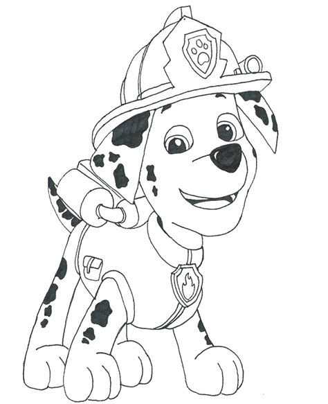 paw patrol sky coloring sheets coloring pages