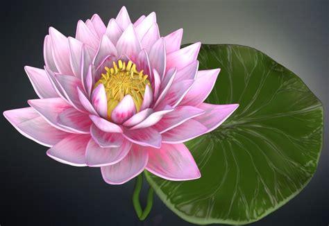 3D Lotus flower high poly | CGTrader