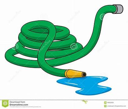 Hose Clipart Garden Illustration Rolled Water Hosepipe
