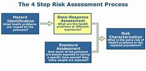 Conducting a Human Health Risk Assessment | Risk ...