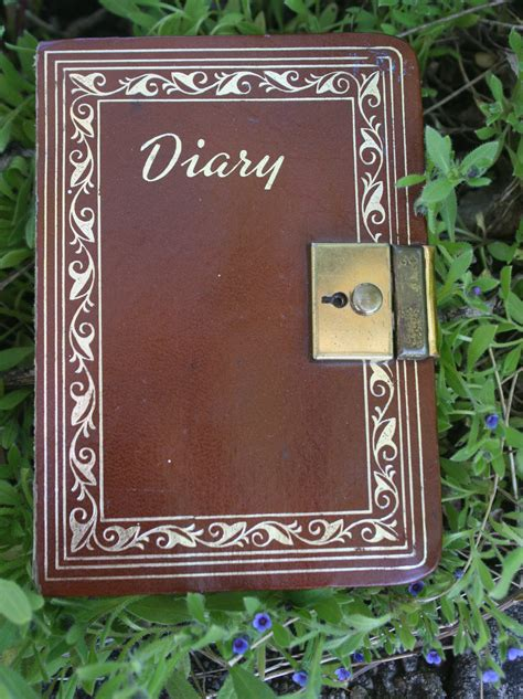 The Diary the diary inheritance of memories