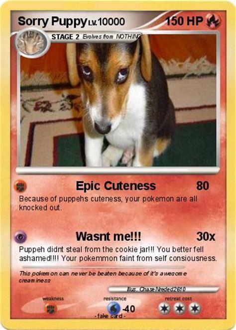 pokemon  puppy epic cuteness  pokemon card