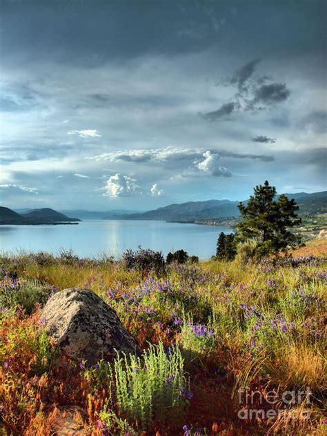 okanagan lake   spring canada amazing world