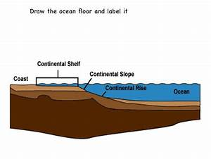 The Ocean Floor  Lesson 0019