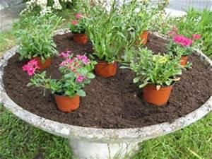 Jardiniere Fleurie Plein Soleil : vite une vasque fleurie pour l 39 t ~ Melissatoandfro.com Idées de Décoration