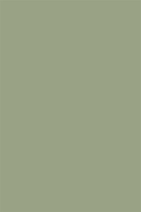 Best 25+ Sage Green Paint Ideas On Pinterest  Sage Color