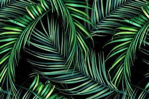 Jungle palm leaves. Tropical pattern ~ Patterns on ...