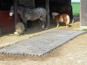 Forum Faire Construire : stabilisation de sol pour un paddock 3 forum cheval paddock pinterest equitation abri ~ Melissatoandfro.com Idées de Décoration