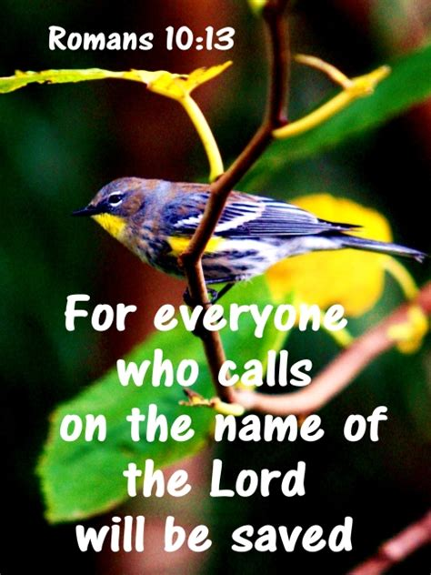 The calling of matthew (). Everyone who calls on the name of the Lord will be saved