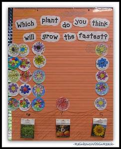 318 Best Images About Grade 3  Plants Play An Integral