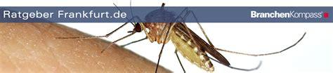 Ratgeber Frankfurt Insektenschutz