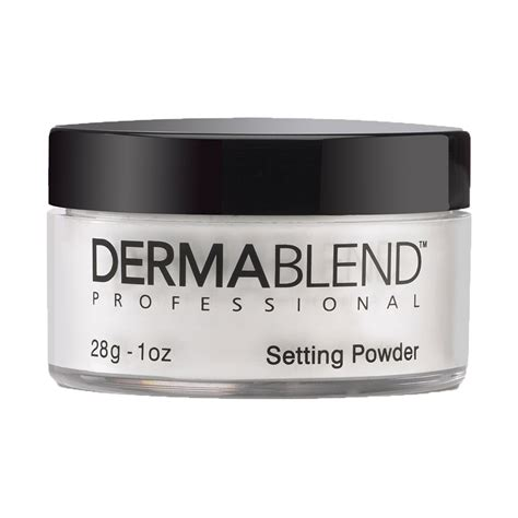 dermablend professional loose setting powder birchbox