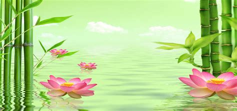 green bamboo background bamboo leaves lotus background