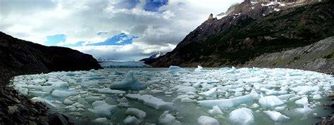 glacier gray grey glacier wikipedia