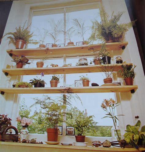 Decorating Ideas For Kitchen Plant Shelves by Decorating Ideas For Plant Shelves In Living Room New