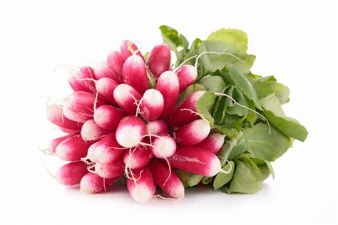 recherche recette de cuisine radis légumes