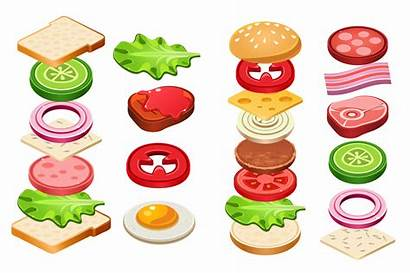 Sandwich Ingredients Vector Burger Cheese Bacon Bun