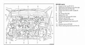 Thoma Bus Wiring Diagram